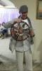 Самый богатый человек «Святочных встреч»: Виталий Нефедьев (Санкт-Петербург, Россия)